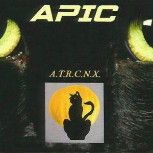 APIC-Securite